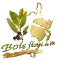 logo_boisflotte