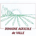 logo_valle